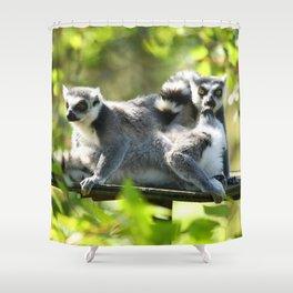 Funny Lemurs of Madagascar Monkey Business Shower Curtain