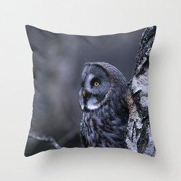 GREAT GREY OWL ON SILVER BIRCH TREE Throw Pillow