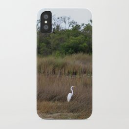 Swamp Song iPhone Case