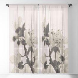 Blossoms Monochrome Sheer Curtain