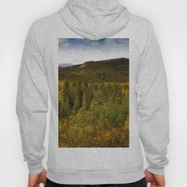 Alaska USA Denali Nature Mountains Parks landscape photography Bush Trees mountain park Scenery Shrubs Hoody