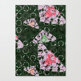 Flowers and Moths Canvas Print