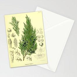 Botanical Juniper Stationery Cards