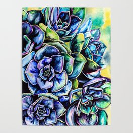 Watercolor Succulents art painting Poster
