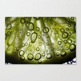 Lime Canvas Print