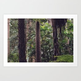 Urban Tropical Rainforest Art Print