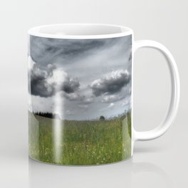 Path Through Meadow, Black Forest - Landscape Photography Coffee Mug