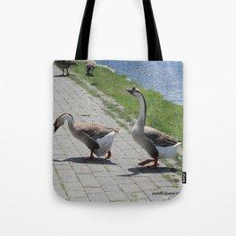 Bigs birds 2 Tote Bag