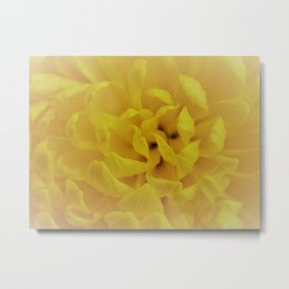 Misty Flower Metal Print