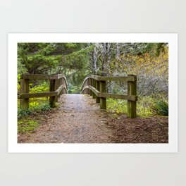 Fogarty Creek State Recreational Area, Bridge, Forest, Green, Autumn, Art Print