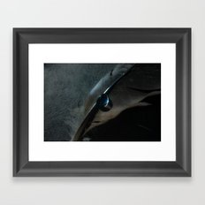 crow feather Framed Art Print