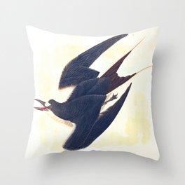 Sooty Tern John James Audubon Scientific Illustration Birds Of America Drawings Throw Pillow