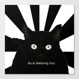 Bo Is Watching You! Canvas Print
