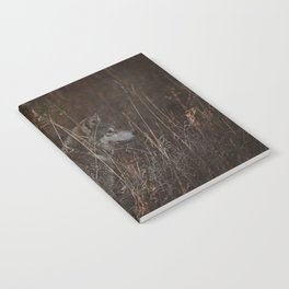 Cana in Fall Foliage Notebook