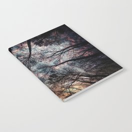 Starry Sky in the Forest Notebook