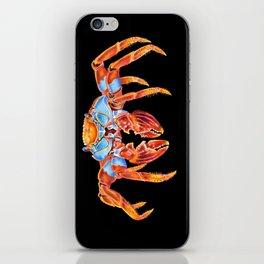Sally Lightfoot Crab iPhone Skin