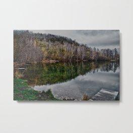 winter pond Metal Print
