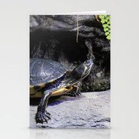 turtles Stationery Cards featuring Turtles by ValerieBlack101