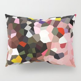 Evolution Geometric Shapes Pillow Sham
