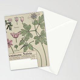 Maurice Pillard Verneuil - Étude de la plante (1903): Wood Anenome Stationery Cards