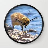 ryan gosling Wall Clocks featuring Gosling by Heidi Fairwood