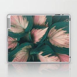 Pink Hosta Leaves Laptop & iPad Skin