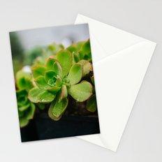 Succulent Rain Drop Stationery Cards