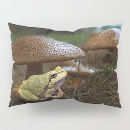 Here is my home Pillow Sham
