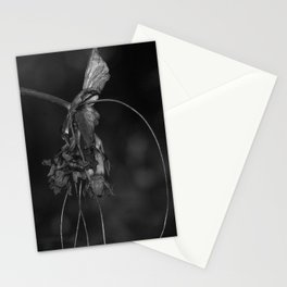 Batwing Plant (Tacca chantrieri) Stationery Cards