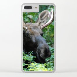 Moose in Underbrush Clear iPhone Case