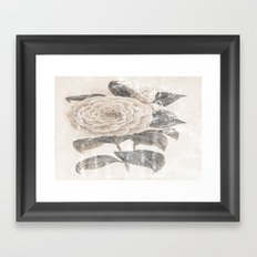 Vintage Camellia Framed Art Print