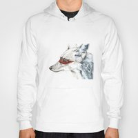 coyote Hoodies featuring Coyote I by Susana Miranda ilustración