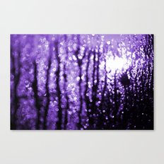 Purples Revenge Canvas Print