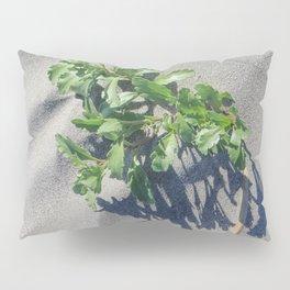 Shoreline Shadow 2 Pillow Sham