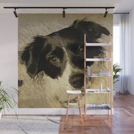 Zoey the Border Collie Wall Mural