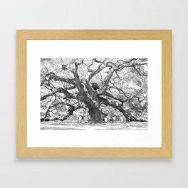 The Angel Oak - Charleston, South Carolina Framed Art Print