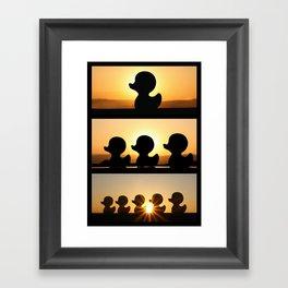 Ducks Ducks Ducks! Framed Art Print