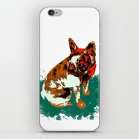 pitbull iPhone & iPod Skins featuring PITBULL by Guille Pachelo