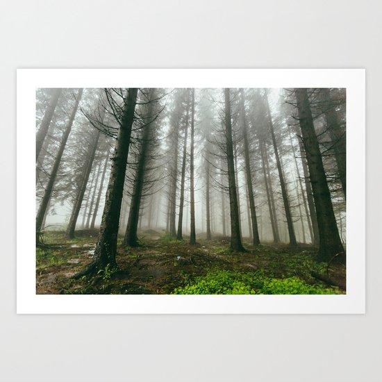 Follow me into the woods Art Print