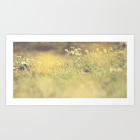 buttercup daisies Art Print