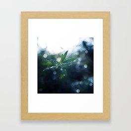 Shining in the Dark. Framed Art Print