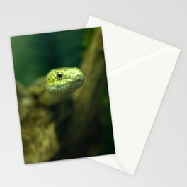 In your face! Stationery Cards