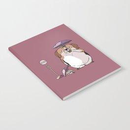 BeagleTORO Notebook