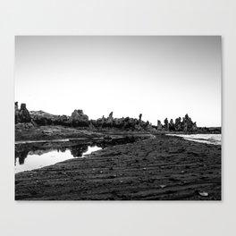 Mono Lake 4 Canvas Print