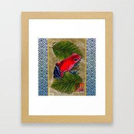 DW-002 Floating Frog Framed Art Print