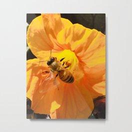 Pollination #1 Metal Print