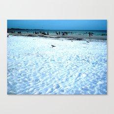 Lost Seagull Canvas Print