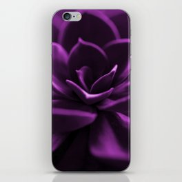 Succulent Plant In Violet Color #decor #society6 #homedecor iPhone Skin