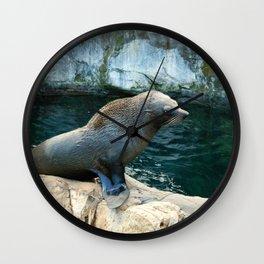 Fur Seal Wall Clock