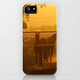 Morning In Canutillo iPhone Case